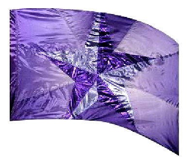 PURPLE STAR WORSHIP BANNER PRAISE FLAG WPISF98LG